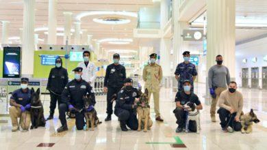 Photo of Köpekler koronavirüslü yolcuları buluyor